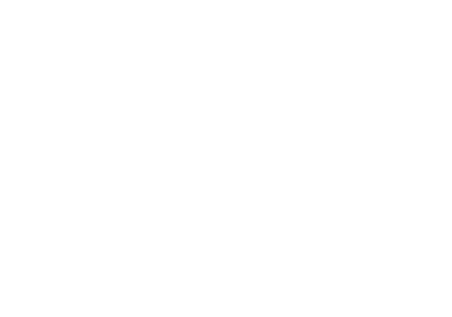 Stingray-Rising-star-logo.png