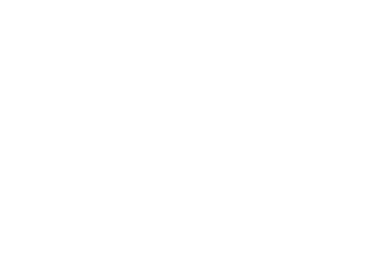 Stingray-Rising-stars-logo.png